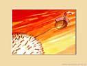 HISTORIE W CHMURACH XVI, 20x25cm  własność prywatna